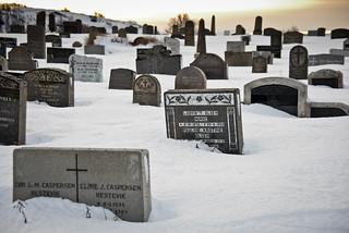 Les tombes i la neu / Snowy tombs