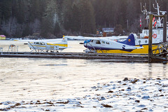 Frozen Seaplanes (Jason Pineau) Tags: porthardy pt port hardy bc britishcolumbia vancouverisland ice frozen ocean sea bay tide sunrise beaver dehavilland dhc2 floatplane seaplane cessna 185 wilderness seaplanes winter