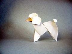 Poodle - Román Díaz (Rui.Roda) Tags: origami papiroflexia papierfalten dog chien cão cachorro perro poodle román díaz