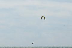 2018_08_15_0152 (EJ Bergin) Tags: sussex westsussex worthing beach seaside westworthing sea waves watersports kitesurfing kitesurfer seafront lewiscrathern
