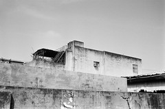 (Janeprogram) Tags: пленка 35mm blackandwhite bnwphotography filmphotography ilfordpan100