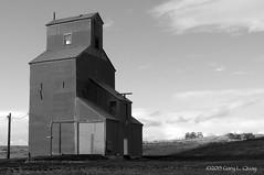 Grain Elevator, Wasco County, Oregon (Gary L. Quay) Tags: grainelevator oregon pacificnorthwest agriculture farm grain westernusa nikon garyquay bw autumn farmbuilding