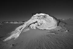 Assateague Dune in Snow (quetzlegrys) Tags: snow ice winter assateague island maryland canon 5d 1635 landscape bw wind sand beach mood