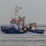 Zeeschelde - Betonningsvaartuig - Westerschelde - Zeeland thumbnail
