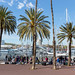 Palm Promenade and flea market in front of a yacht harbour at Passeig de Joan de Borbó in Barcelona, Spain