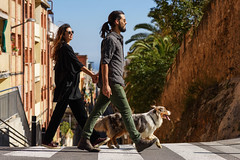 What To Do If Your Partner Doesn't Like Your Pet, Because You Shouldn't Have To Choose (alsfakia) Tags: wisdom by alexandros g sfakianakis anapafseos 5 agios nikolaos 72100 crete greece 00302841026182 00306932607174 alsfakiagmailcom active activity animal casual city copyspace couple crossing crosswalk dog domestic enjoying friend friendly friendship happiness happy holdinghands horizontal leisure lifestyle nature outdoors people pet romance sideview street stroll strolling summer sunshine together urban walk walking