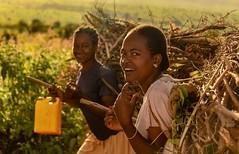 Dareshe Women (Rod Waddington) Tags: africa african afrique afrika äthiopien ethiopia ethiopian ethnic etiopia ethnicity ethiopie etiopian omovalley omo dareshe tribe traditional tribal culture cultural streetphotography road landscape outdoor women