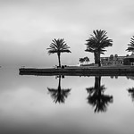 Morning Reflections in BW thumbnail