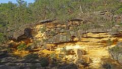 Around Mermaids Pool_3 (Tony Markham) Tags: tahmoorgorge cliffs sandstone cave overhang mermaidspool bargoriver