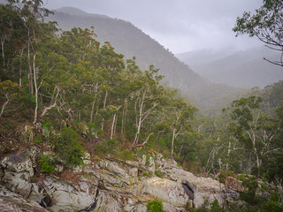 Overlooking Myanba Gorge on a drizzly afternoon