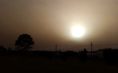 Dust (Kaptain Kobold) Tags: kaptainkobold illawarra dust sky sun morning nsw australia tree wollongong weather cloud