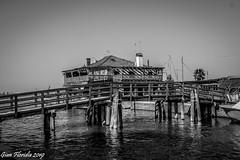 Mazzorbo, Laguna Veneta (Gian Floridia) Tags: mazzorbo venezia bn bw bienne bricole laguna ponte pontile veneta