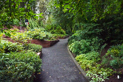 Akureyri botanical garden (jmarnaud) Tags: iceland 2018 summer family akureyri botanical garden walk flower colors path green