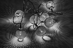 Lights and Shadows (WilliamND4) Tags: nikon d810 50mm light shadows shadowy blackandwhite
