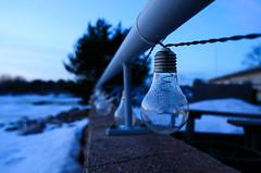 blue light (Antti Tassberg) Tags: talvi bokeh lamppu tse24mm bluehour helsinki suomi ilta evening finland scandinavia twilight winter lamp
