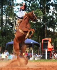 Juan Blas Surt e Ventena (Eduardo Amorim) Tags: gaúcho gaúchos gaucho gauchos cavalos caballos horses chevaux cavalli pferde caballo horse cheval cavallo pferd pampa campanha fronteira quaraí riograndedosul brésil brasil sudamérica südamerika suramérica américadosul southamerica amériquedusud americameridionale américadelsur americadelsud cavalo 馬 حصان 马 лошадь ঘোড়া 말 סוס ม้า häst hest hevonen άλογο brazil eduardoamorim gineteada jineteada