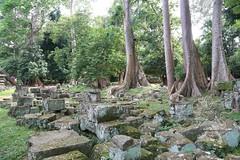 Angkor_Siem Reap_2014_06