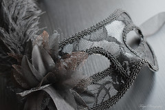 Mask... (Maria Godfrida) Tags: lookingcloseonfriday mask object darktones grey textures feathers lace sidelight sidelit closeup cof055john