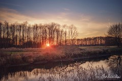 Sunset Time (Stathis Iordanidis) Tags: silence serenity tranquility travel landscape countryside niers wachtendonk stillwater riverside river grassland grass trees sunlights sund sun sunset