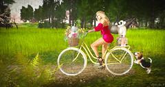Puppy Power (larisalyn (Rachel)) Tags: bike dog beagle penguin flowers girl blonde stbernard secondlife horse