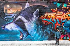Street art (Philippe POUVREAU) Tags: jaune montreal montréal québec quebec street streetart city ville hiver winter urbain rom1 graffiti