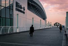 展示ホール (ゑびす) Tags: 横浜 みなとみらい パシフィコ横浜 cp+ cp+2019 sigma dp2m dp2merrill merrill foveon