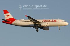 OE-LBJ (timo.soyke) Tags: orange2fly norwegian wideroe vueling iberia ryanair airberlin easyjet wizzair eurowings lot austrian condor royalbrunei airbus boeing bombardier a320 a319 a321 b737 b737800 dash8 b767 b767200 ham eddh hamburg hamburgairport sxkat eifvm lnwdi ecmcj eckks eidpy dabha hbjxm halxh dabkn oyybz oelbj daiad v8mhb