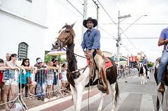 Desfile cívico 2019
