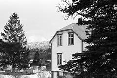 Kjøpsvik - Eastman Double-X (magnus.joensson) Tags: norway norwegian kjöpsvik kjøpsvik nikonfe zeiss planar 50mm orangefilter xtol 11 kodak eastman doublex fpp limitedsupply handrolled 5222