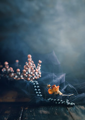 You are your own queen (Ro Cafe) Tags: ddproject52 crown dark lensbaby lensbabyedge80 pearlnecklace sonya7iii stilllife week3 blacktulle darkmood dryrose egativespace naturallight