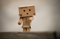 Downward Look (SoS) (13skies) Tags: sos danbo box fun smileonsaturday smile theme sonya99 outside