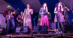 BOARoots-06038 (John French - Happy Snapper) Tags: bradfordonavon rootsfestival bradford avon music centre folk bluegrass blues