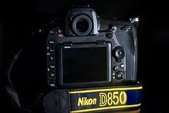D850 + 200-500mm (ruifo) Tags: nikon d850 dslr d700 sigma 105mm f28 ex dg os hsm macro 11 nikkor afs 200500mm f56e ed vr gear equipment equipamento porn gas flash dark black camera lens lente