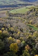 point de vue (jean-marc losey) Tags: france occitanie tarn puycelsi bocage forêt automne autumn randonnée d700