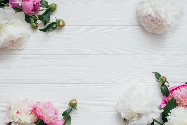 Обои цветы, розовые, white, белые, бутоны, wood, pink, flowers, пионы, peonies картинки на рабочий стол, раздел цветы - скачать