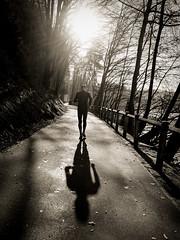...zur Sonne... (Werner Schnell Images (2.stream)) Tags: ws running sonne sun