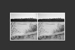 Mud lake in winter (Howard Sandler (film photos)) Tags: stereo stereoscopic 3d mudlake britannia ottawa winter frozen lake ice snow stereorealist davidwhite setonrochwite film blackandwhite acros