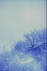 the blue notes (chiara ...) Tags: film diapo 35mm pentax analogphotography blue countryside snow