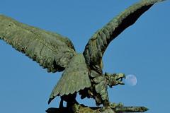 A Turul elnyeli a Holdat :) (Péter_kekora.blogspot.com) Tags: budapest hungary nikon d7100 budacastle february turul moon fullmoon