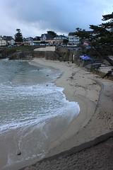IMG_9763 (mudsharkalex) Tags: california pacificgrove pacificgroveca loverspointpark loverspointbeach beach