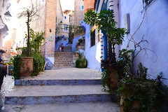 Chefchaouen, Morocco, January 2019 D810 634 (tango-) Tags: chefchaouen bluecity villaggioblu bluevillage morocco maroc 摩洛哥 marruecos марокко المغرب