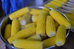 Corn on the cob (amslerPIX) Tags: planetkids guatemala corn cob food meal yellow
