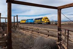 SW 2414 at Whitewater Jct (shawn_christie1970) Tags: silvercity newmexico unitedstatesofamerica us rebuilt emd gp30u southwesternrailroad train railroad whitewaterjct cattle santafe