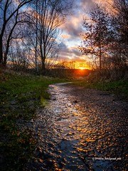 Sunset Path (iPhone Fotograaf) Tags: clouds evening sunset sun tree groningen water iphone8plus sky reflection