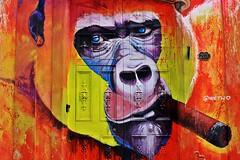 Mandril (Campanero Rumbero) Tags: lahabana cuba art arte artista paint painting pintura pintor pincelada grafiti colores color colors fachada puerta door mandril habano puro streetart