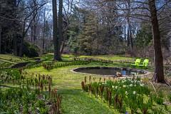 A7307557 (jhallen59) Tags: chanticleer radnor pennsylvania garden spring stream pond