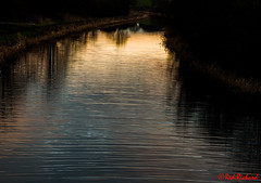 Forth and Clyde Canal (red.richard) Tags: canal forth clyde reflections water sky d800 redrichard