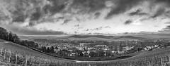 Avenay (ZeGaby) Tags: avenayvaldor blackandwhite champagne clouds irix15mm landscape naturephotography noiretblanc panorama paysage paysagedechampagne pentaxk1 vignobles vines vineyards marne france fr