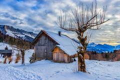 Chalets D' Alpages en  Chartreuse (Savoie 01/2019) (gerardcarron) Tags: massifchartreuse cabane canon80d ciel cloud forest foret hiver mountains nuages