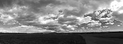 Valle de Oro National Wildlife Refuge.  Albuquerque, New Mexico, USA. (cbrozek21) Tags: blackandwhite bw monochrome landscape panorama sky clouds newmexico